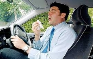 Hay Fever and Drving